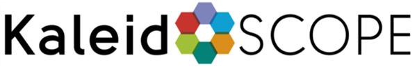 Designflooring Kaleidoscope Logo