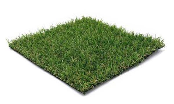 Grass INC. Paxx